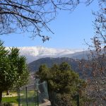 Lebanon-DSC_0408